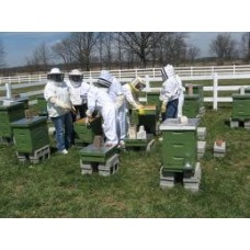 Beekeeping Course March 17 & 18